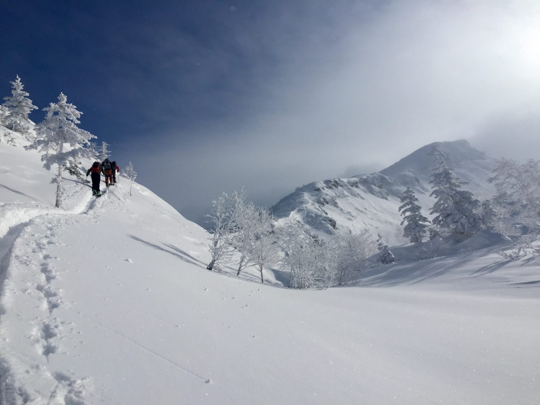 Japan Powder Ski Tours