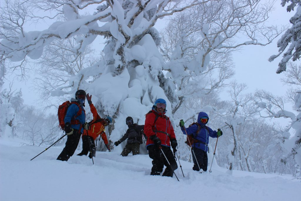japan powder tours