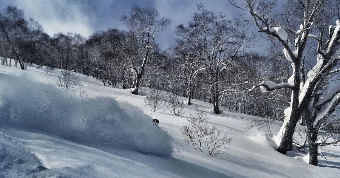hokkaido powder skiing