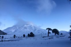 Another April Snowfall For Argentina and Chile:  Photo Gallery