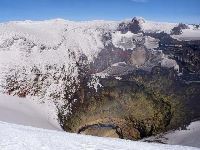 crater-araucariatrees-southamerica-chile-argentina-snow