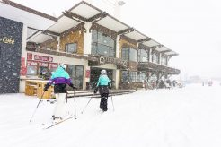 Where to go Powder Skiing on the 4th of July