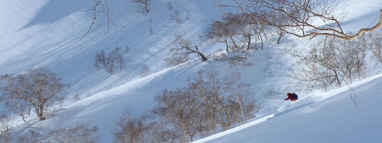 hakuba myoko backcountry skiing tour