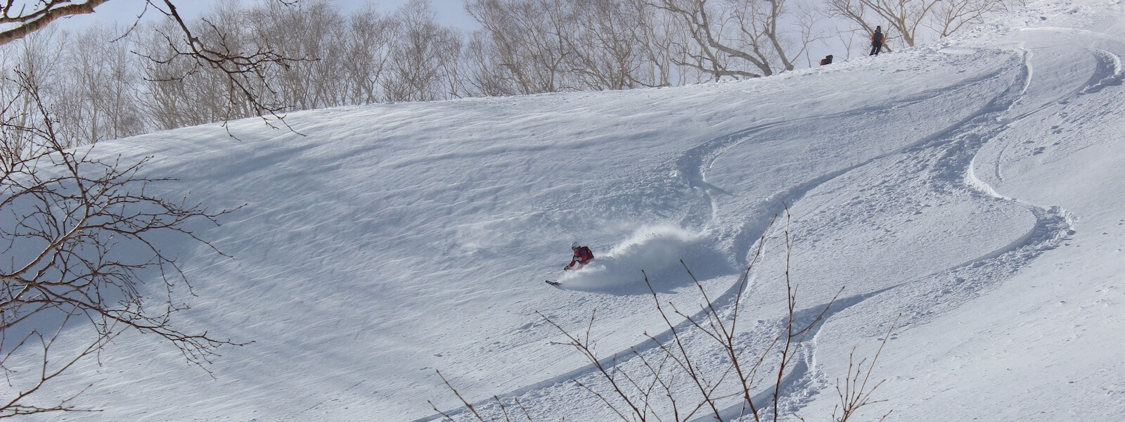 hakuba backcountry skiing