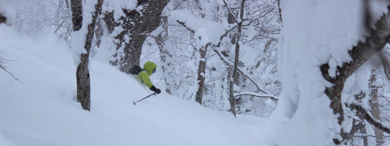 samurai powder skiing tour in japan