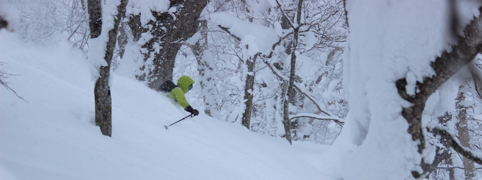 samurai powder skiing tour in japan