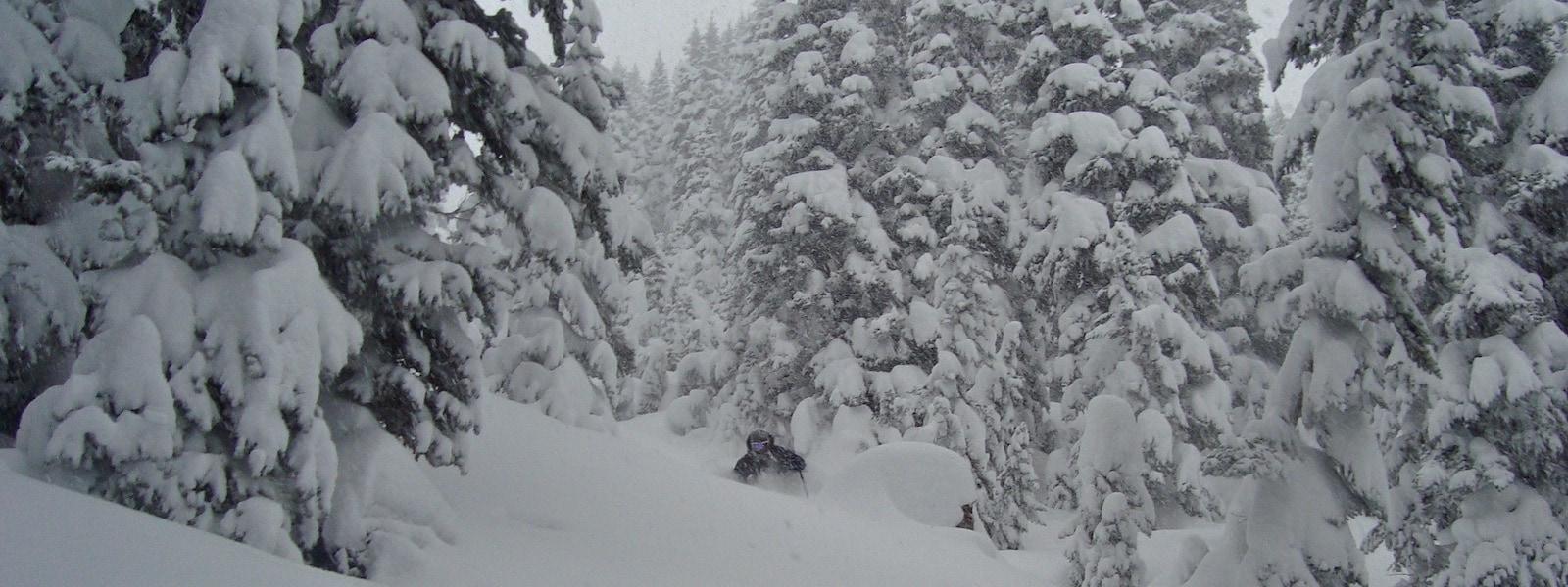 whistler backcountry skiing