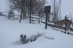 Heavy Snow Hits Chile!  July 25 Photo Update.