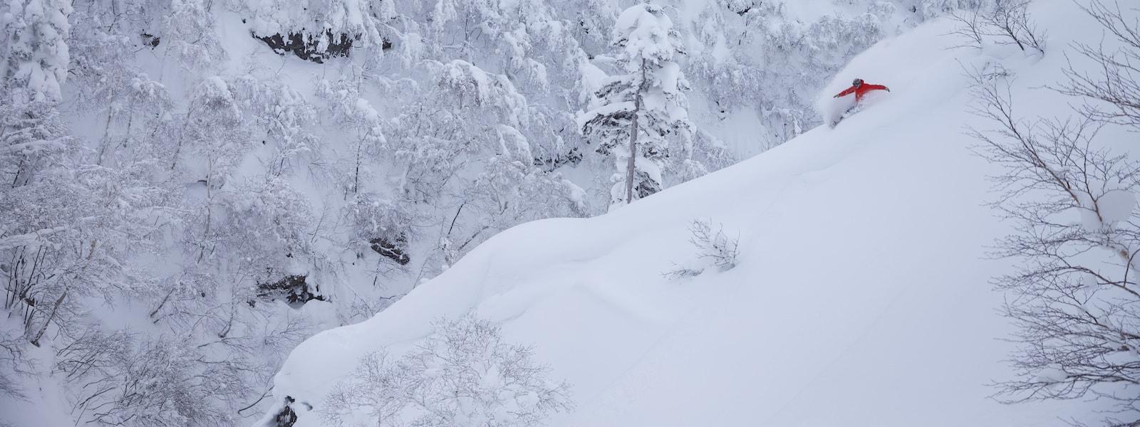 hakuba snowboarding (p.c. @Welsh)