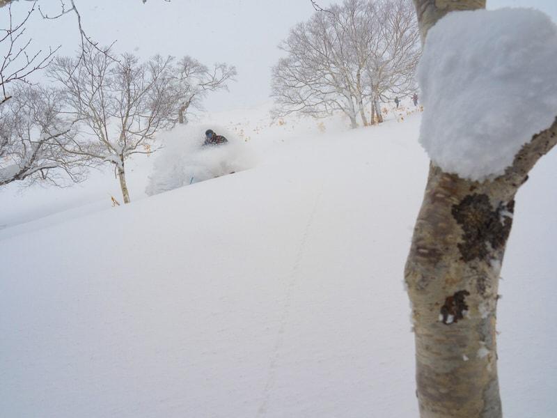 off piste skiing in hokkaido