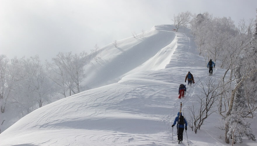 hokkaido ski resort backcountry access
