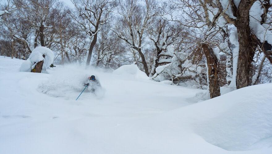 hokkaido ski tours