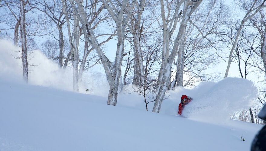 Japan ski tours and snowboard trips