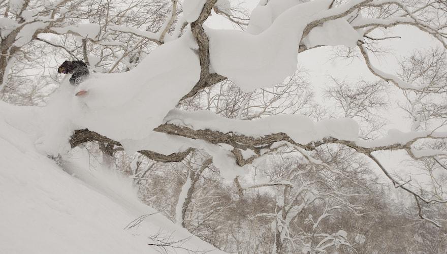 snowboarding deep japow
