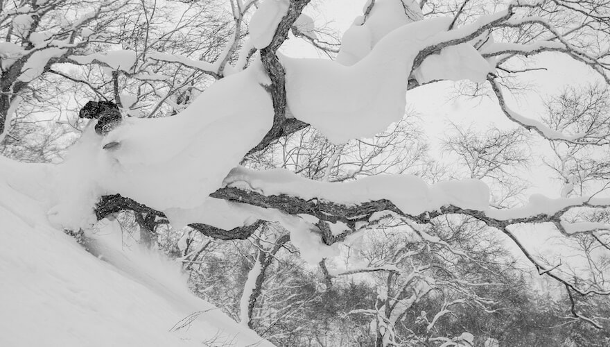 snowboarding in hokkaido @markwelshphoto