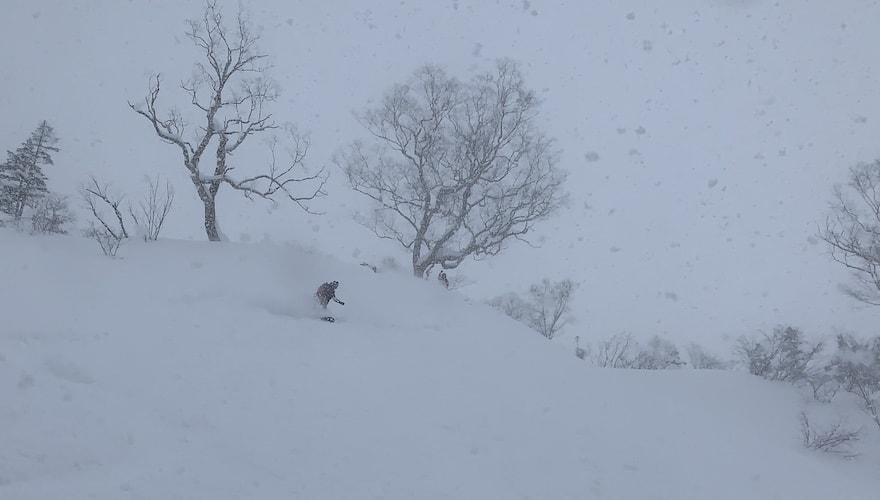 snowboarding japow