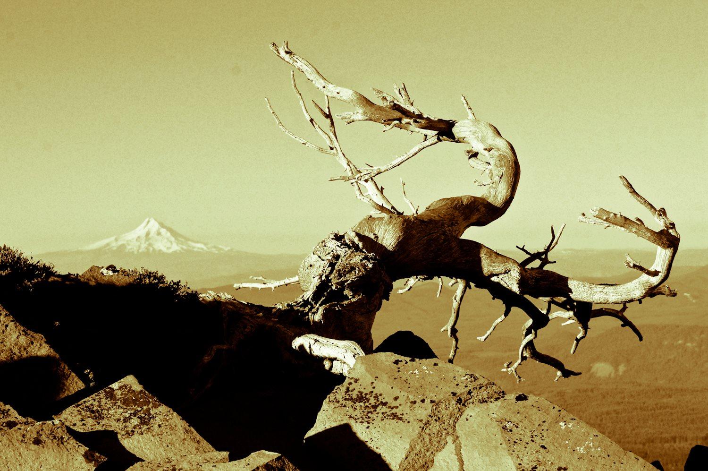 Drew Tabke Volcano Vista