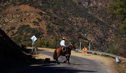 Chilean Gaucho on the road to Valle Nevado